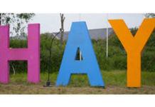 Thumb_hay-001