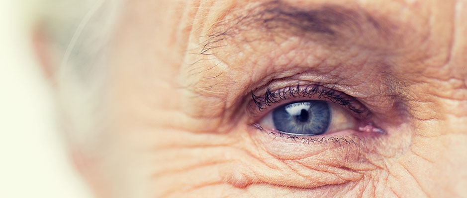 The Ageing Eye