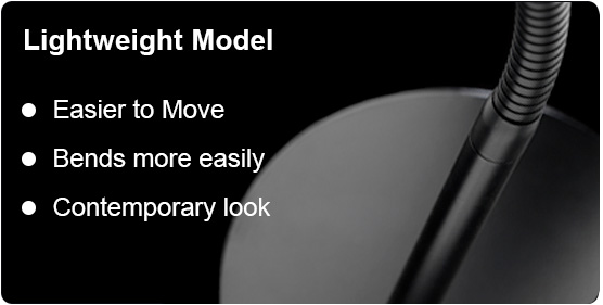 Lightweight Model Details