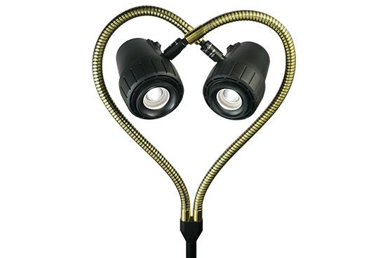 Varifocus Gemini Valentines Image