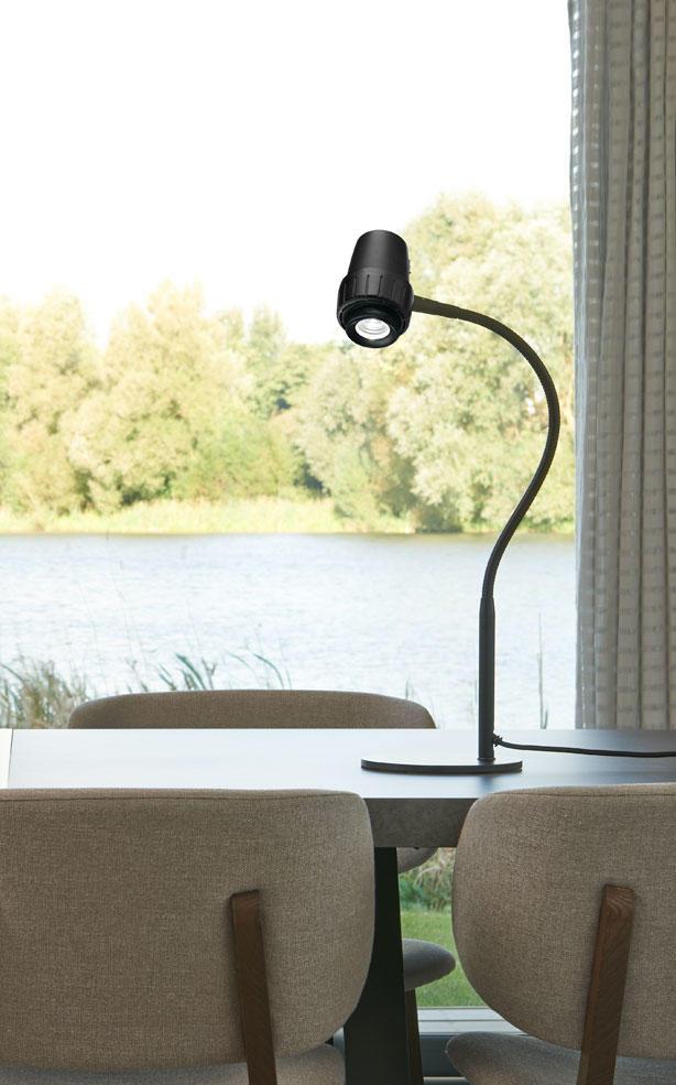 Varifocus Table Light